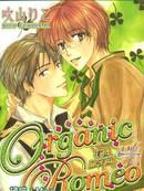 Organic Romeo有机罗密 第1卷